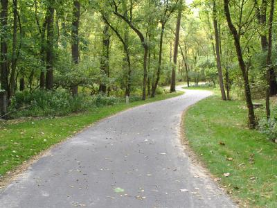winding recreation trail in the woods